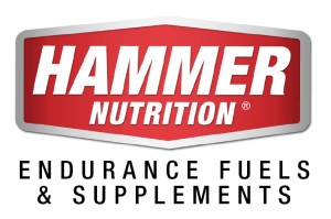 Hammer-logo-with-text